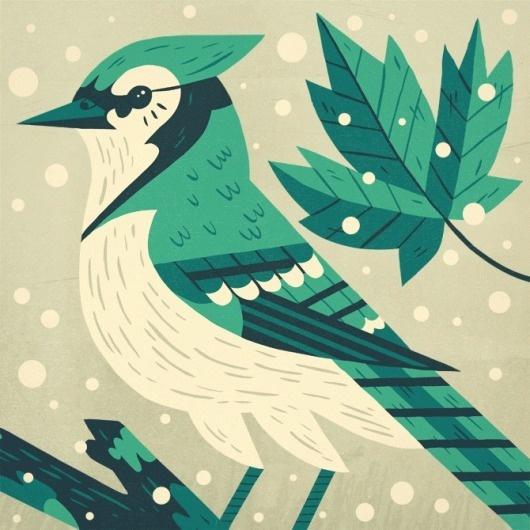 Owen Davey   BLDGWLF #leaf #snow #bird #illustration #tweet