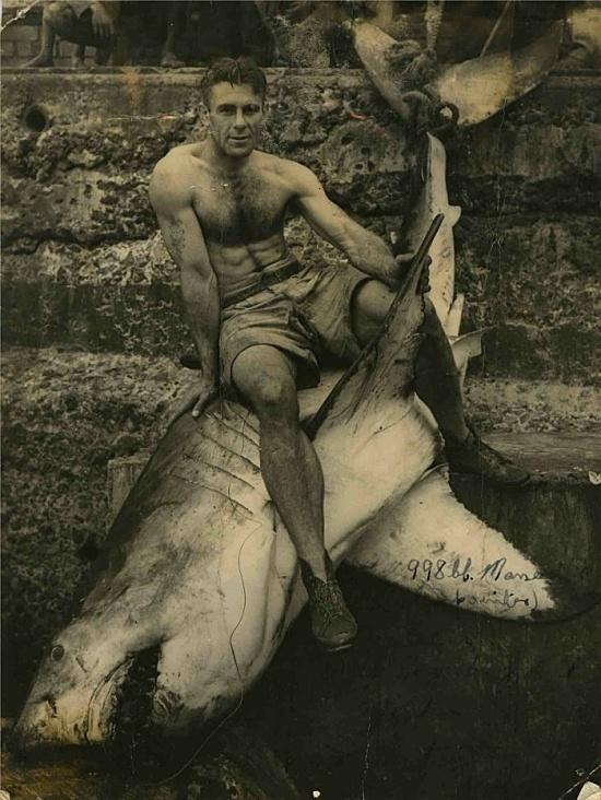 Man concours the shark #history #fishing #shark #durban