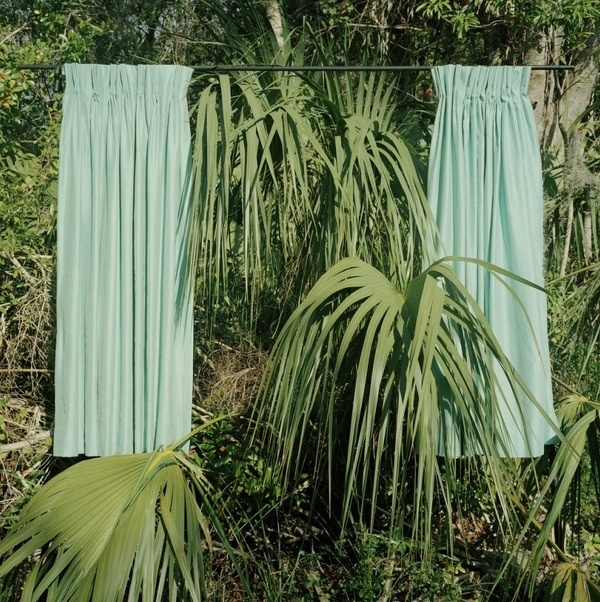 Curtains in nature
