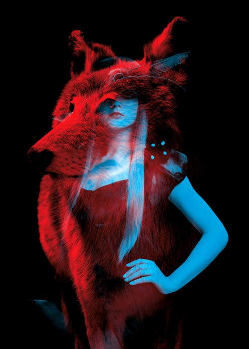 bêtes de mode : H E L M O #animals