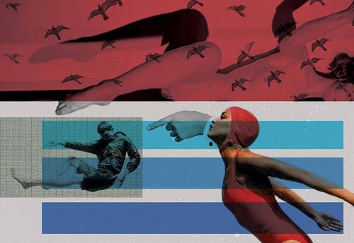 crítica | criticism #cap #birds #swimming