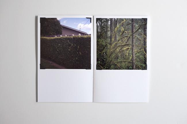 I FEEL BETTER ~ BIT BY ZEUS ~ Tim Gatto #zine #publication