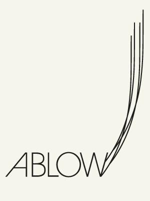Vonsung #vonsung #logo #identity #ablow