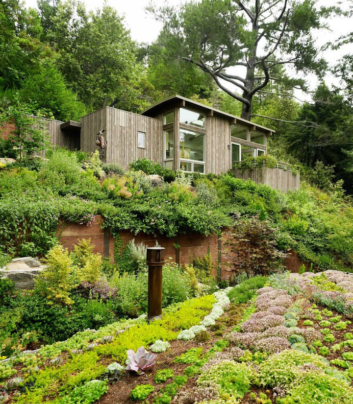 retreat, California / Feldman Architecture