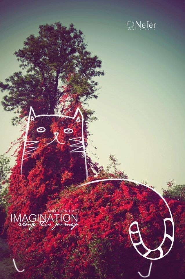 And then i met IMAGINATION along this journey ♥ | la fotografía | #photography #concept #grpahics