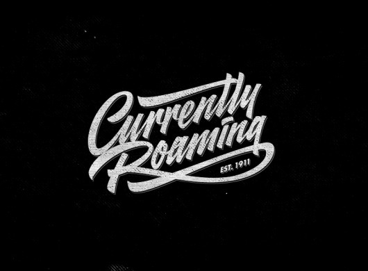 Dribbble - currently-roaming.png by Sergey Shapiro