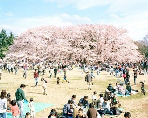 Nobuto Osakabe | PICDIT #photo #photography #landscape