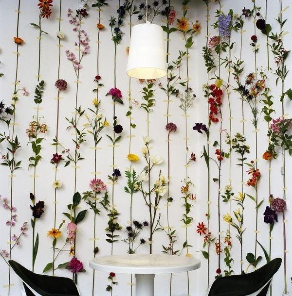 Flower #spring #wallpaper #flowers