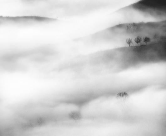 Andrei Baciu | Photogralysm | Winterly Haiku 6474 #fog