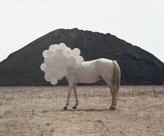 Death of an Image – Andrea Galvani | The Design Ark #andrea #galvani #installation