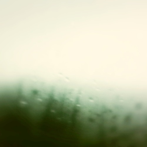 Uriá Fassina #traveling #water #movement #window #green