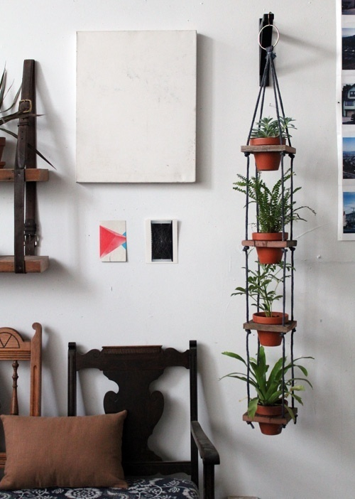 design #hanging #interiors #plants