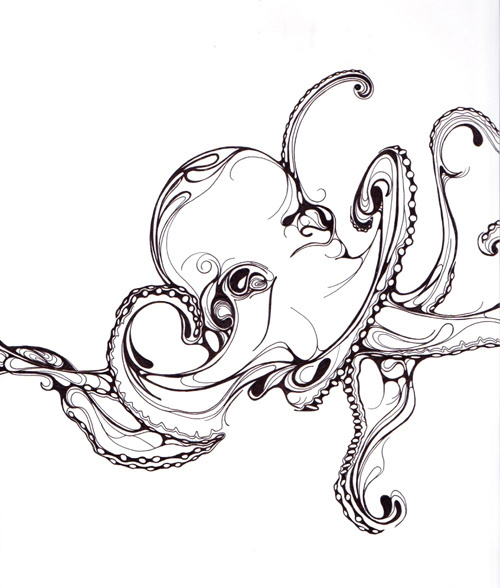 Tumblr illustration minimal sketch drawing pen octopus