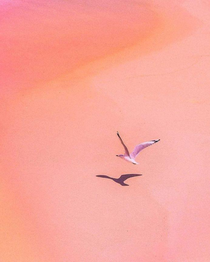 Simple and Stunning Minimalist Photography by Anton Kollo