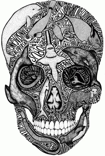 Illustrations by Sarah King I Art Sponge #phrases #fish #illustration #swords #sarah #king #skull