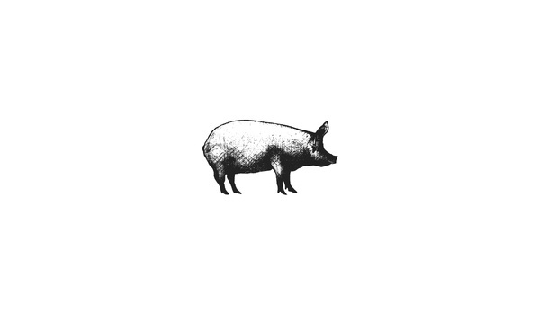 Elevn Co. / Local 215 Logos #worn #grayscale #minimalism #clean #food #pig #illustration #weathered #drawn #distressed #logo #hand #sketch
