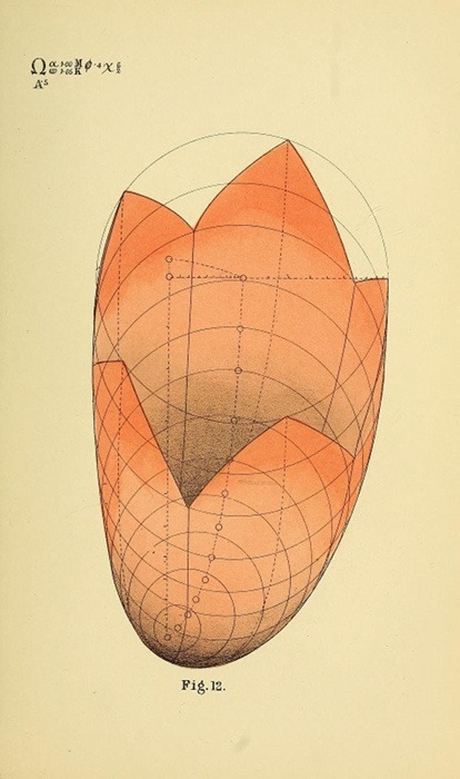 B. W. Betts' Geometrical Psychology   The Public Domain Review #forms