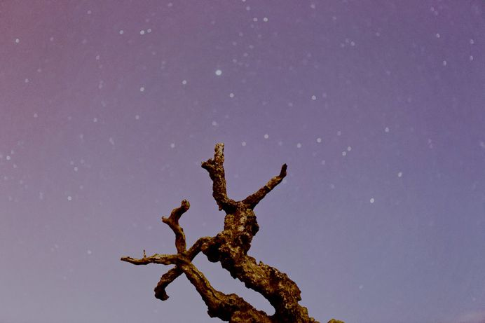 Death stars photo by Sébastien Bourguet (@cmdor) on Unsplash