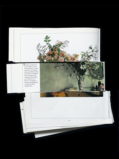 Arrangement by James Henkel #juxtaposition #arrangement #photography #collage #flowers