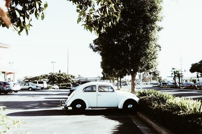 melnoelle photography #bug #beetle #vintage #vw #car
