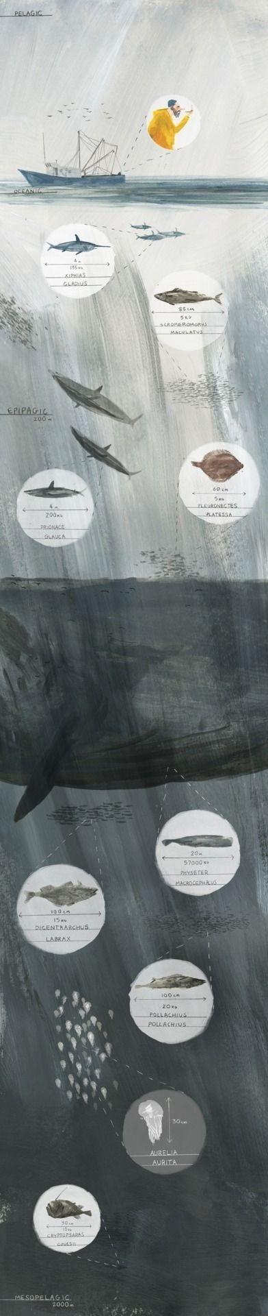 Joe Todd Stanton. http://joetoddstanton.com/ #whale #fisherman #fish #illustration #boat