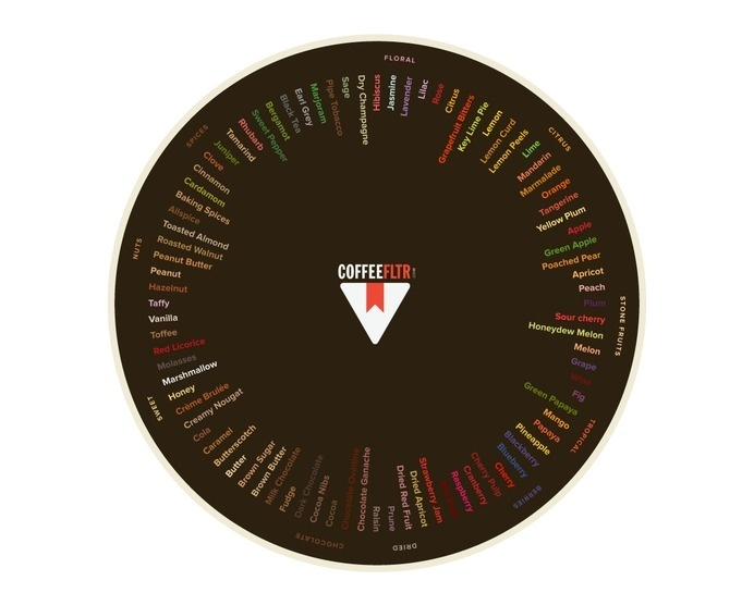 COFFEEFLTR.COM –Find & bookmark coffee. #infographic #color #graphic #filter #flavor #wheel #info #coffee #taste