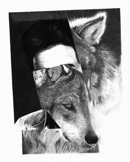 The Fox Is Black #kaneko #ei #white #black #illustration #animal #wolf #bw
