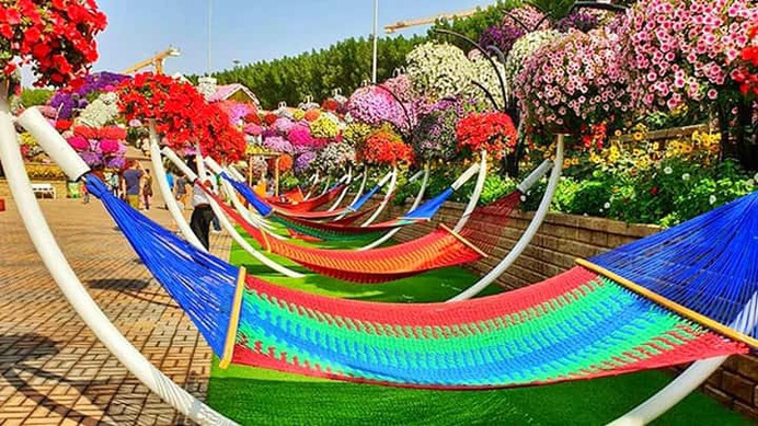 Various kinds and types of Hammocks at the Dubai Miracle Garden. All kinds of hammocks are available for the visitors of the Dubai Miracle Garden.