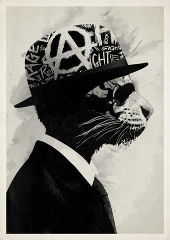 Middle Class Rebel #owens #rhys