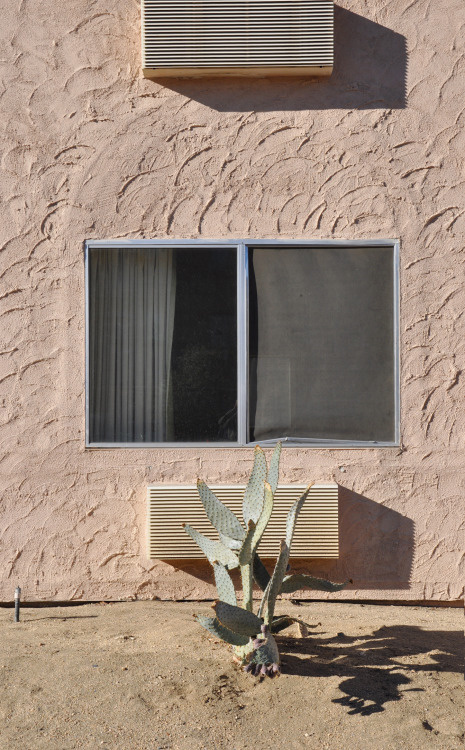 _CA+ __california ___yucca valley, motel super 8 PHOTOGRAPHIE © [ catrin mackowski ]