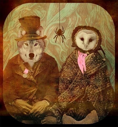 Lou Madhu #madhu #owl #artwork #digital #lou #wolf #animals #collage