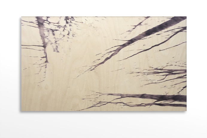 #bindermartin.com #wood #birch # birch tree #printing on wood #art #woodart #photography