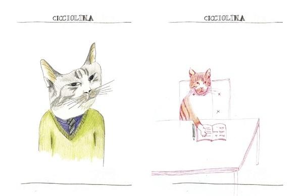 Cicciolina the Cat : Jung Eun Park Illustration #illustration