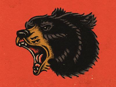 illustration, bear, animal, color