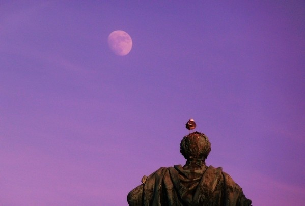 Stock Home 2011 on Behance #sweden #wallb #sky #seagull #statue #stockholm #moon