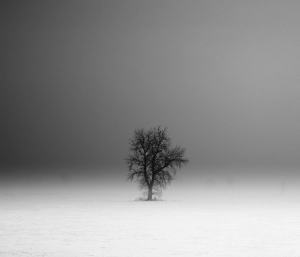 Derek Toye #inspiration #white #black #photography #and