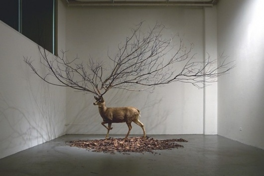 Colossal #deer #installation