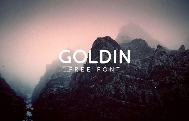 Goldin Free Typeface