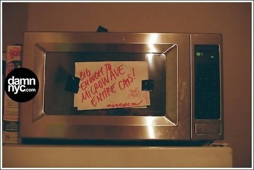 damn nyc - pictures #damnnyc #analog #damn #cat #microwave #photography #nyc
