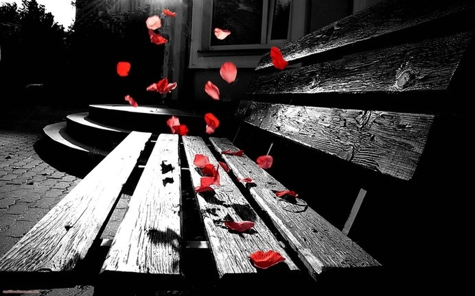 Romantic Color Splash Inspiration Romantic Photography