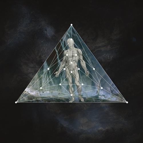 Tanya Johnston — Apostasia (11 #tanya #geometric #human #triangle #johnston