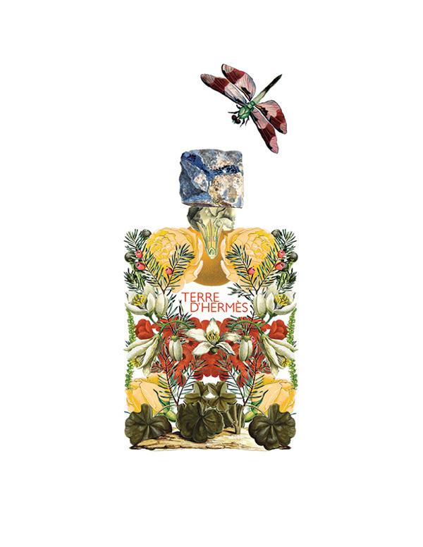 Floral Alchemy by Sixto Juan Zavala #dragon #branding #bottle #design #floral #alchemy #product #fly #flowers