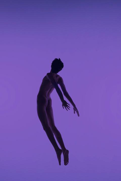 Alyssa Katherine Faoro | PICDIT #photo #photography #purple