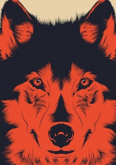 Wolf on the Behance Network #illustration #vector #wolf
