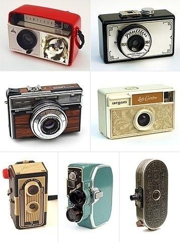 Piccsy :: photo! #picture #my #take