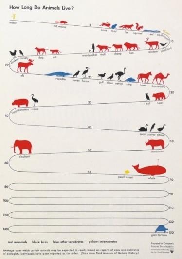 swissmiss #information #infographic #data #visualization #animals #longevity