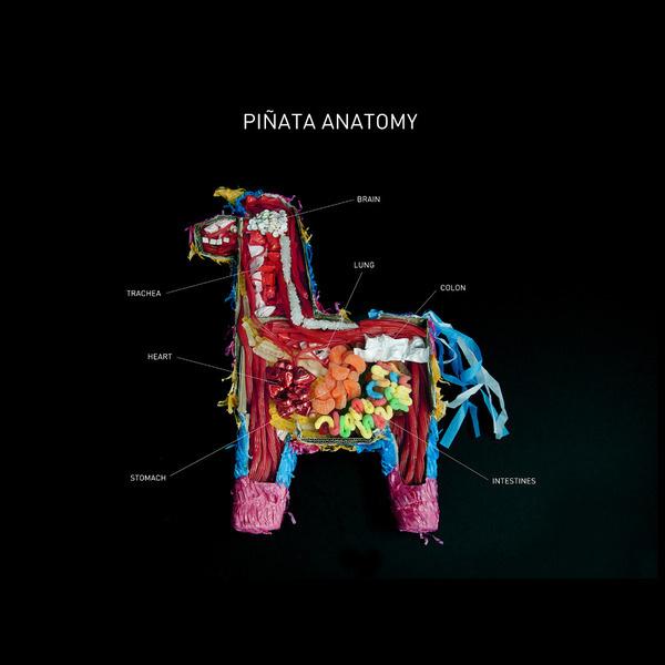 Piñata Anatomy phildesignart #pinata