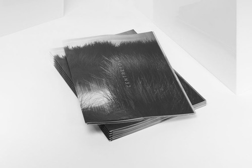 Graphic foxi #cover #book