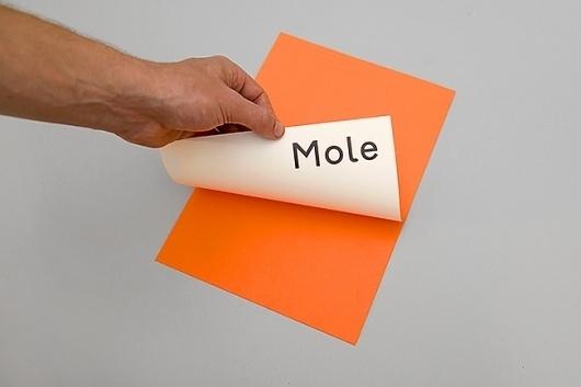 Mole Architects #mole #orange