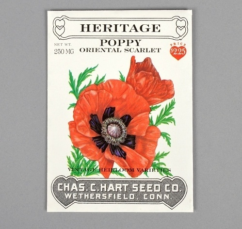 POPPY #packaging #vintage #painting #hearts #type